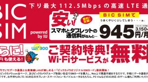 ビックカメラ、月額945円でLTEと公衆無線LANが使える「BIC SIM」発表