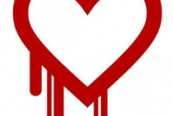 OpenSSLの脆弱性「Heartbleed」問題、国内スマホ6機種に影響