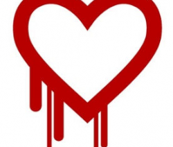OpenSSL Heartbleed