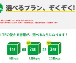 mineo、2GB/3GB利用